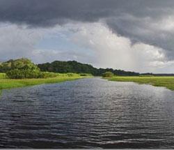 Les Marais de Kaw en pirogue