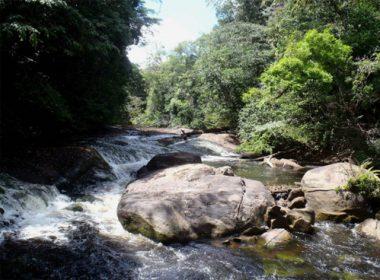 Découverte de la Guyane