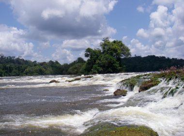 Expédition sur les fleuves Maroni et Tapanahony
