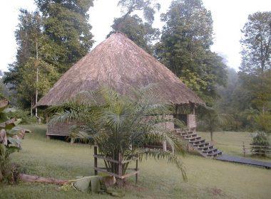 Camp Saut